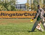 jocuri: Frisbee
